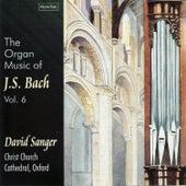 The Organ Music of J.S. Bach, Vol. 6 by David Sanger