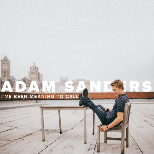 I've Been Meaning to Call by Adam Sanders