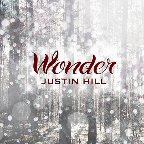 Wonder by Justin Hill