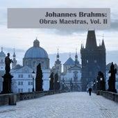 Johannes Brahms: Obras Maestras, Vol. II by Various Artists