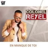 En manque de toi de Colonel Reyel