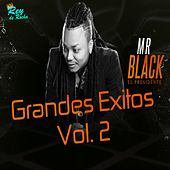 Grandes Éxitos, Vol. 2 de Mr Black