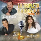 La Tripleta Popular, Vol. 17 by Various Artists