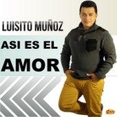 Asi Es el Amor von Luisito Muñoz