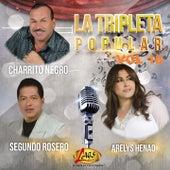 La Tripleta Popular, Vol. 18 by Various Artists