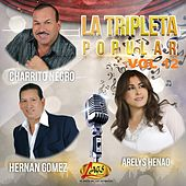 La Tripleta Popular, Vol. 12 by Various Artists