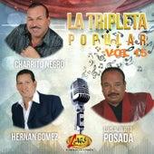 La Tripleta Popular, Vol. 15 de Various Artists