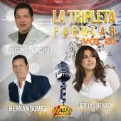La Tripleta Popular, Vol. 20 by Various Artists