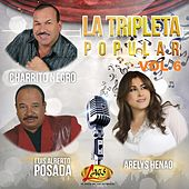 La Tripleta Popular, Vol. 6 de Various Artists