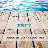 Plunge Into The Cool Wet by Odetta