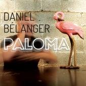 Paloma by Daniel Bélanger