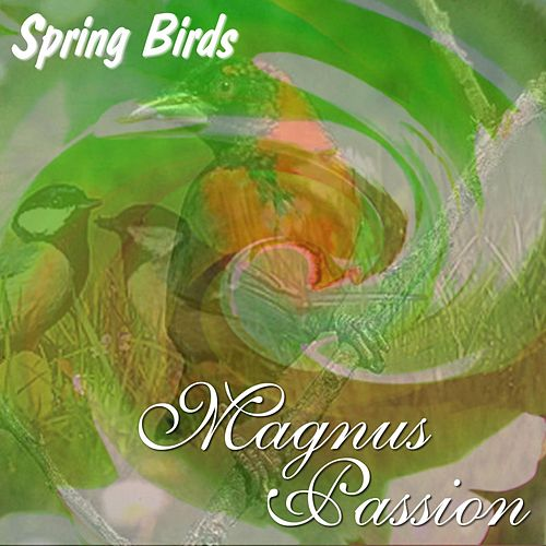 Spring Birds by Magnus Passion