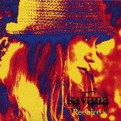 Redbird by Savana