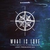 What Is Love 2016 (Regi & Lester Williams Remix) de Lost Frequencies