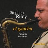 El Gaucho de Stephen Riley