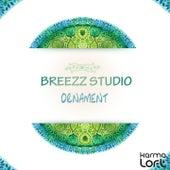 Ornament by Breezz Studio