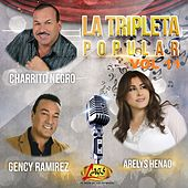 La Tripleta Popular, Vol. 11 by Various Artists
