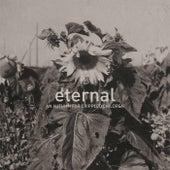 Eternal by An Autumn for Crippled Children