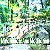 Mindfulness And Meditation de Zen Meditation and Natural White Noise and New Age Deep Massage