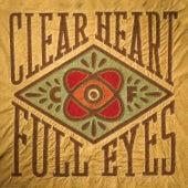 Clear Heart Full Eyes by Craig Finn