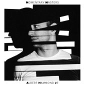 Momentary Masters by Albert Hammond Jr.