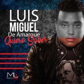 Quiero Saber by Luis Miguel del Amargue