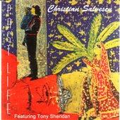 Paste Life by Christian Salvesen
