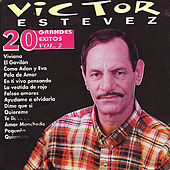 20 Grandes Exitos Vol. 2 by Victor Estevez