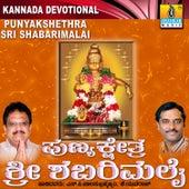 Punyakshethra Sri Shabarimalai by Various Artists