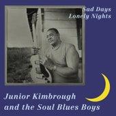 Sad Days, Lonely Nights de Junior Kimbrough