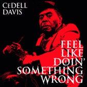 Feel Like Doin' Something Wrong de Cedell Davis