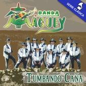 Tumbando Caña (Edición Clásica) de Banda Maguey