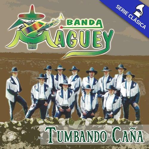 Tumbando Caña (Edición Clásica) by Banda Maguey