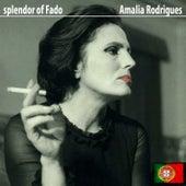 Splendor of Fado de Amalia Rodrigues