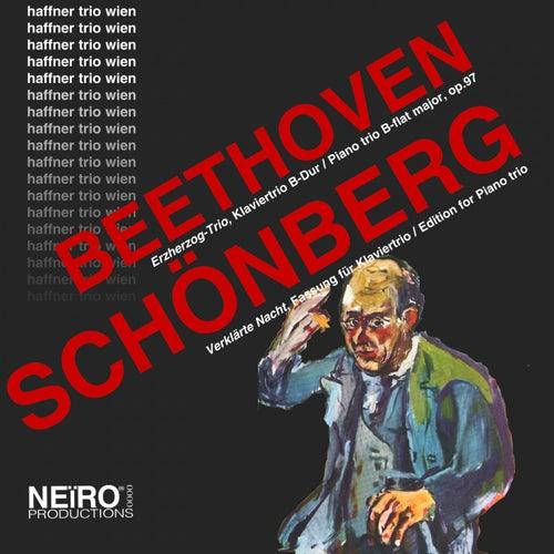 Beethoven Schönberg Klaviertrios by Haffner Trio Wien