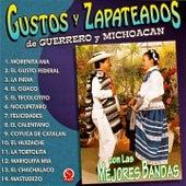 Gustos y Zapateados De Guerrero y Michoacán, Vol. 1 (Con las Mejores Bandas) de Various Artists