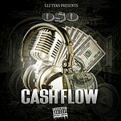 Cash Flow by Oso