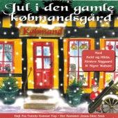 Jul i den gamle købmandsgård by Various Artists