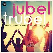 Jubel Trubel, Vol. 6 (Best of Deep & Electronic Housemusic) by Various Artists