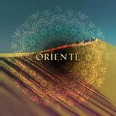 Orienté (New Oriental Trip) de Various Artists