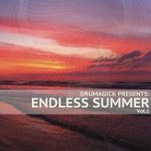Drumagick Presents: Endless Summer, Vol. 1 de Various Artists