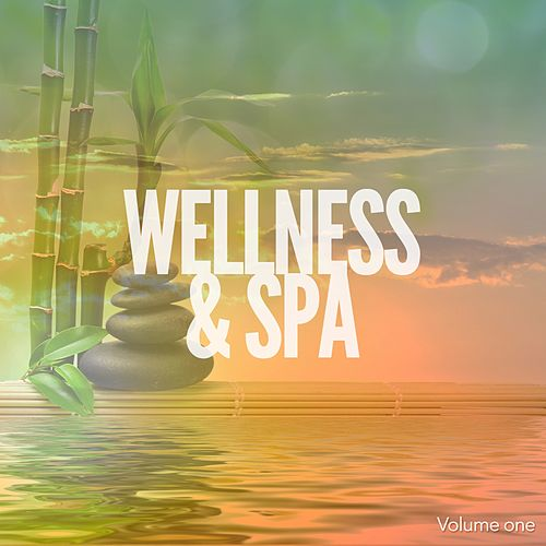 Wellness & Spa Tunes, Vol. 1 (Relaxed & Silent Esoteric Sounds) by Various Artists