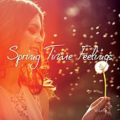 Spring Time Feelings , Vol. 1 (Finest Chill & Lounge Tunes) by Various Artists