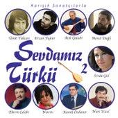 Sevdamız Türkü, Vol.2 (Karışık Sanatçılarla) van Various Artists