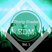 Thirty Shades of EDM, Vol. 1 by Various Artists
