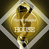 Thirty Shades of House, Vol. 1 von Various Artists