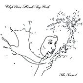 Fireproof by Clap Your Hands Say Yeah