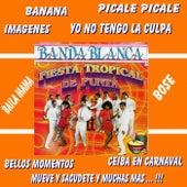 Fiesta Tropical de Punta de Banda Blanca