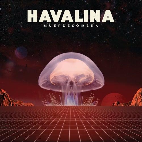 Muerdesombra de Havalina