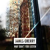Why Don't You Listen by James Cherry